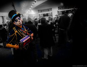 Cirque du Soleil Luzia Opening Night photo Maestro_Color_Accordion.jpg