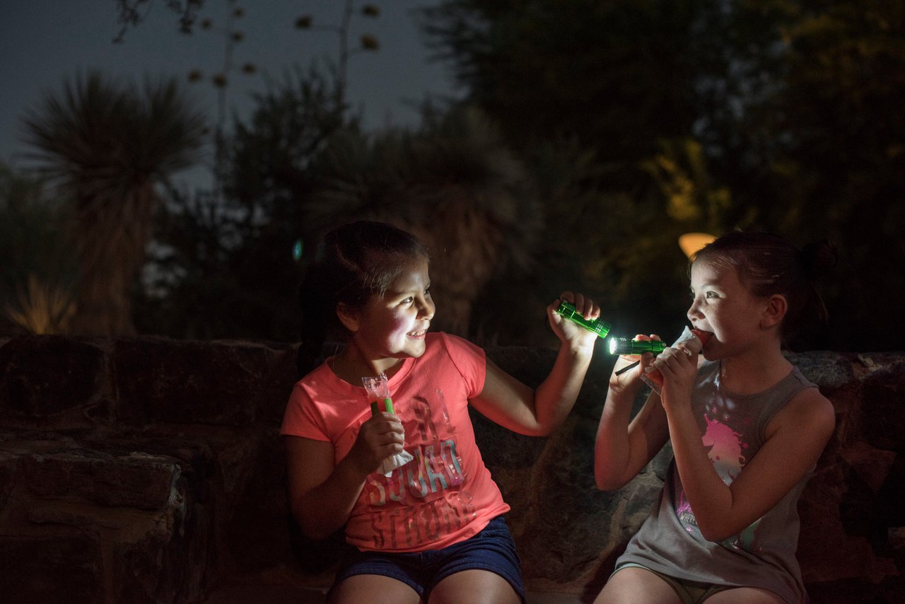 Desert Botanical Garden Flashlight Tour photo Flashlight2018_090.jpg