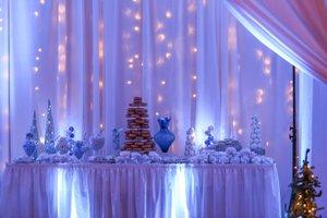 Winter Wonderland Holiday Party photo Garnet Ford-13.jpg