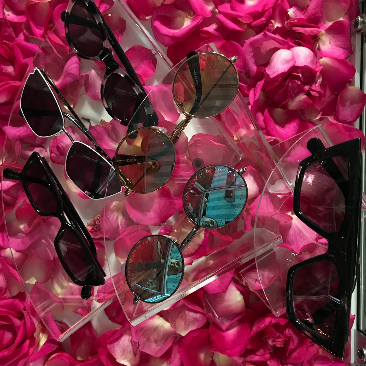 BCBG Sunglass Collection Launch photo IMG_9194.jpg