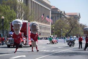 National Cherry Blossom Parade photo EventsDC-NCBF-7077.jpg
