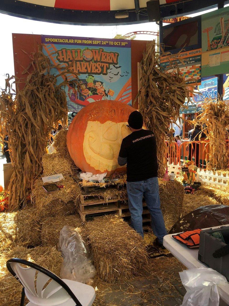 2018 Luna Park Live Pumpkin Carving photo IMG_2440.jpg