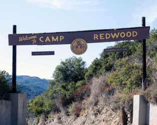 AHS:1984 The Camp Redwood Experience