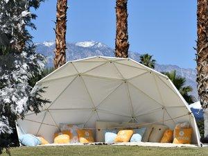 Winter Bumbleland - Coachella photo 30.jpg
