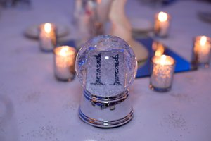 Winter Wonderland Holiday Party photo Garnet Ford-34.jpg