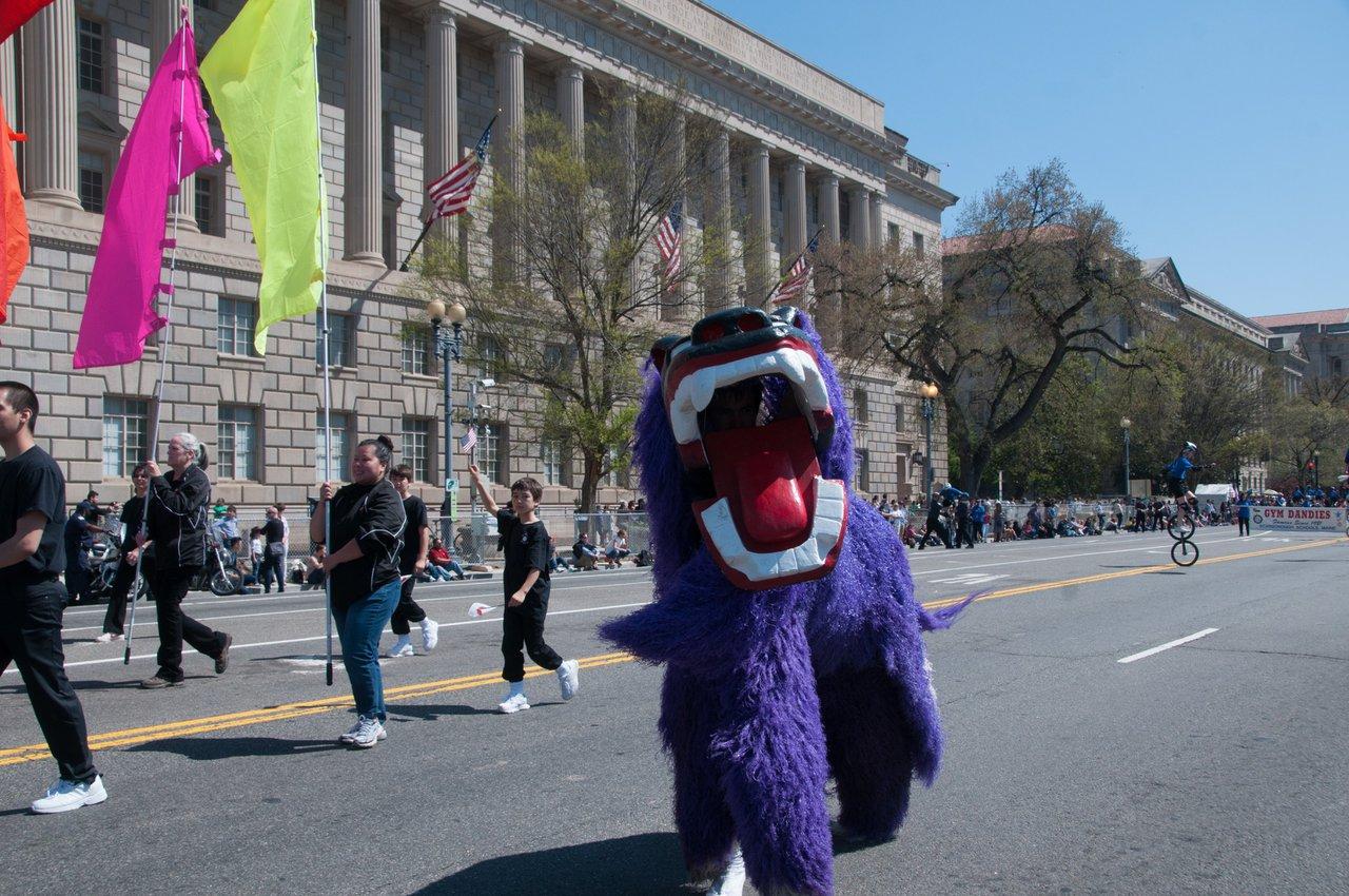 National Cherry Blossom Parade photo EventsDC-NCBF-0033.jpg