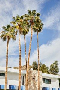 H&M House at Coachella photo Screen Shot 2020-02-12 at 10.jpg