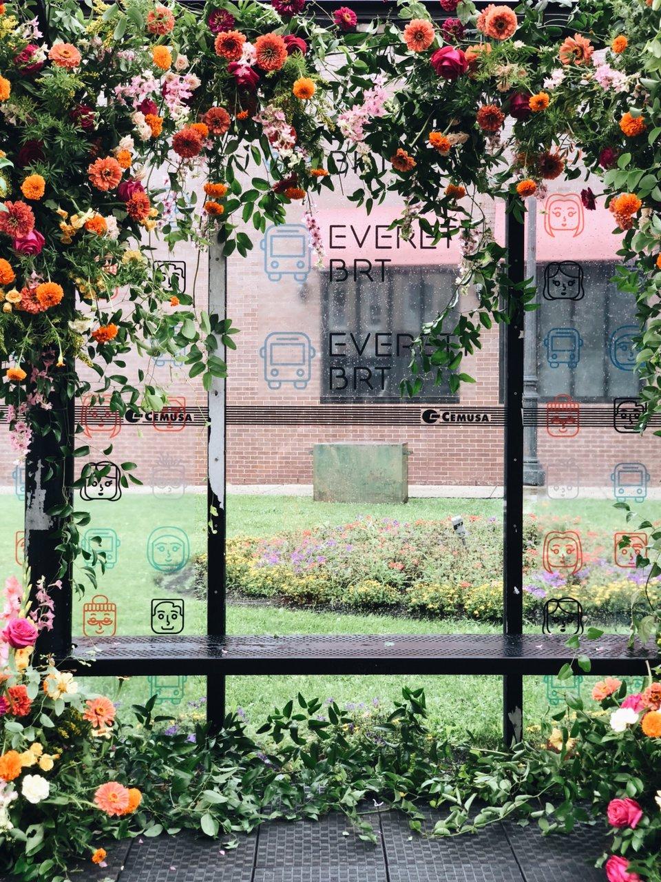 BosBRT Flowerbomb photo 5B2D1A76-B550-49C7-A6B2-5A85A5F1CF9F.jpg