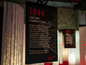 Penfolds x Cedar Lake  photo Penfolds_0003_Gradient_Penfold_Launch-Event-2018_RD2-Final-Delivery_IMG_3201.jpg