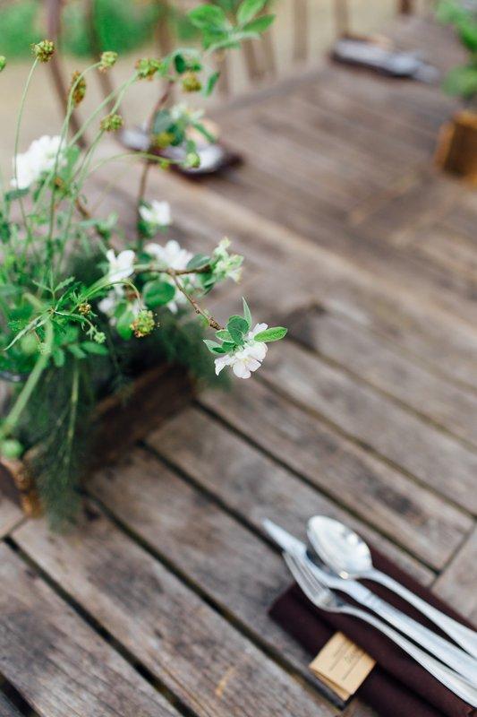 Sustainable Farm Dinner Series photo 20170429_Events_BloomingHillFarm_Dinner-5.jpg