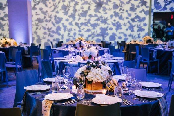 CNB Dinner In Blue Series | Curtis Stone cover photo