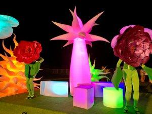 Illumination Garden photo fullsizeoutput_3ba2.jpg