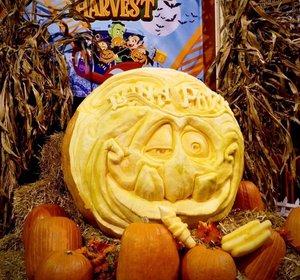 2018 Luna Park Live Pumpkin Carving photo unnamed.jpg
