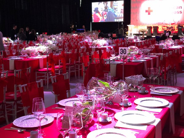 Red Cross Ball 2019 cover photo
