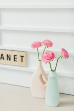 Love, Home & Planet
