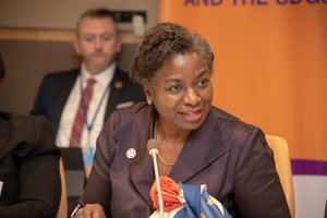 UNFPA Population & Development Meeting photo dsc_0142_32590731947_o.jpg