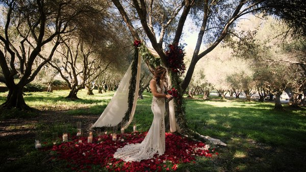 Filoli Gardens Editorial Shoot - Forest  cover photo