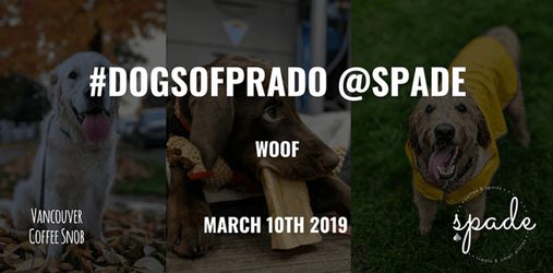 SPCA Treatweek with #DogsOfPrado