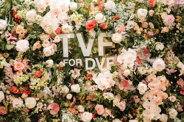 TVF for DVF cover photo