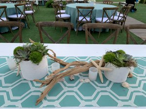 Seaside Soiree photo Low-Country Beach Party Centerpiece with delphi pots, succulents, driftwood, seashells and frosted votives.jpg