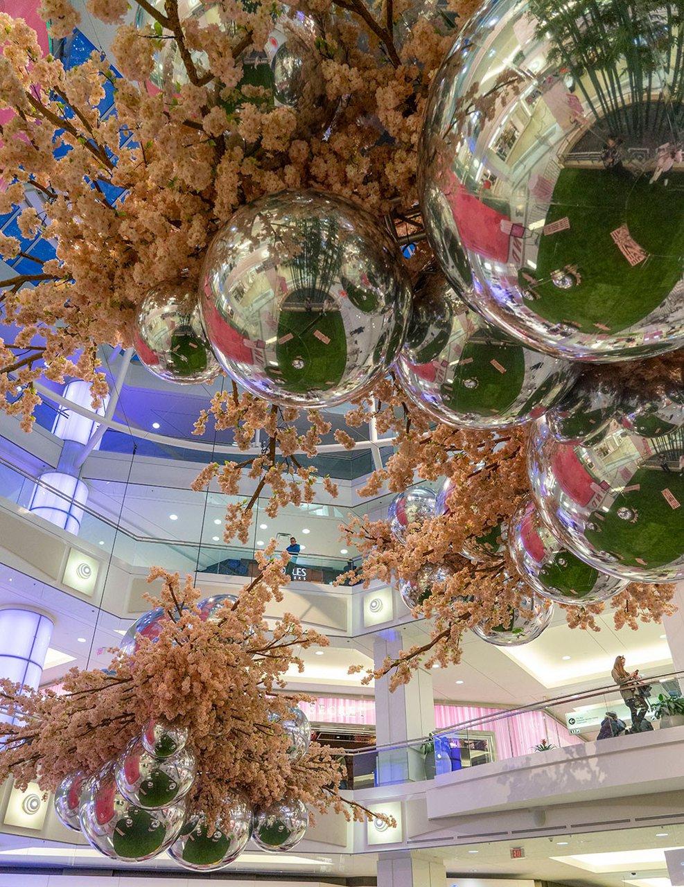Blossom at Metropolis photo Metropolis_Blossom_BZC6789_web.jpg