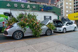 Zipcar Earth Day Flower Flash photo DSC01070.jpg
