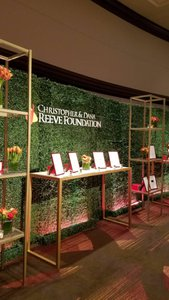 Gala/Christopher & Dana Reeve Foundation photo 1557861588128_IMG_20181120_142534_363.jpg