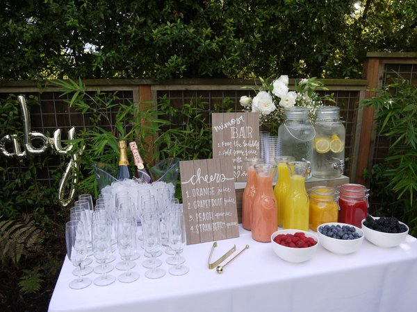Baby Shower Brunch in San Francisco cover photo